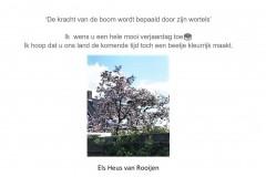 122.-Els-Heus-van-Rooijen